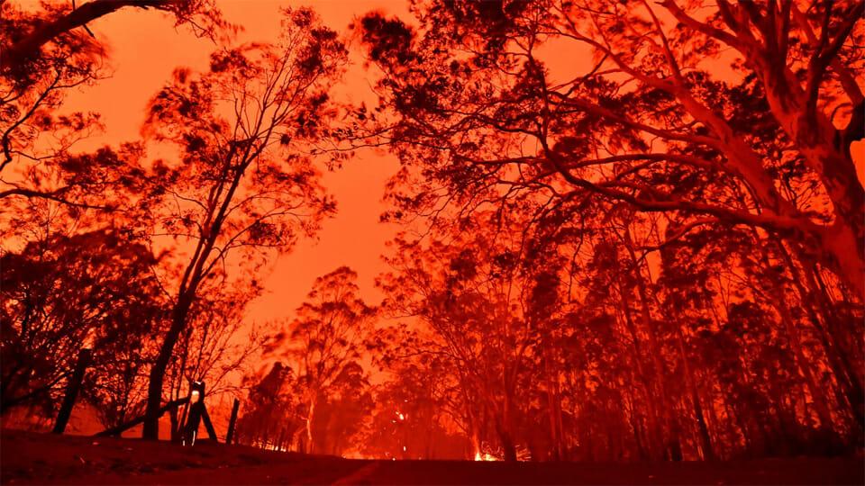 Australia's fire apocalypse