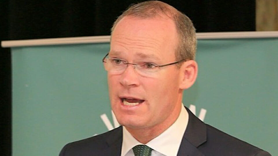 Government considers banning protests as Coveney slams anti-mask march