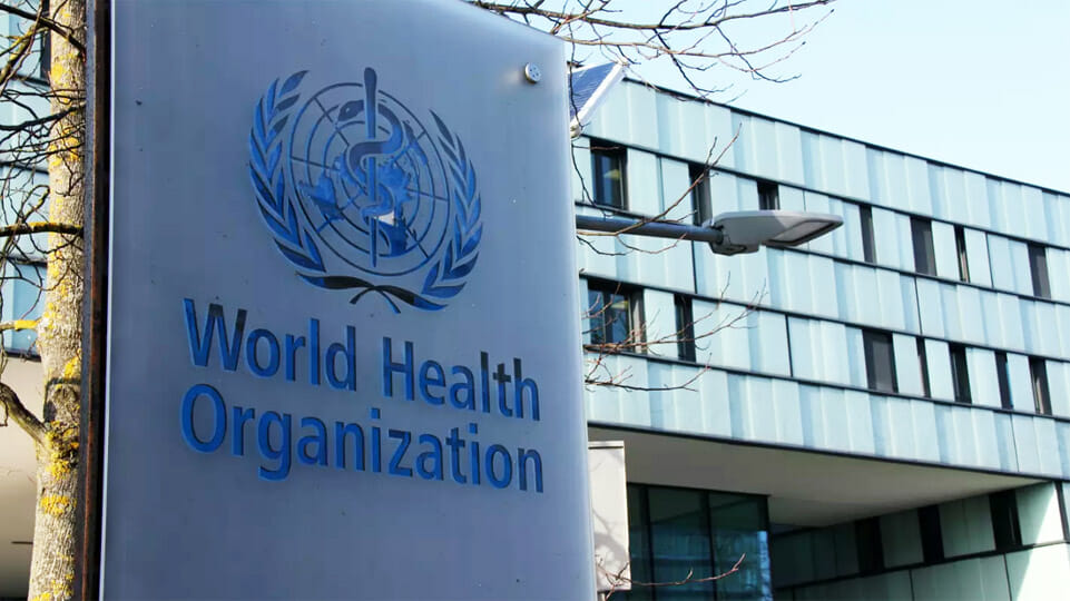 BEN SCALLAN: The World Health Organisation is totally compromised by China