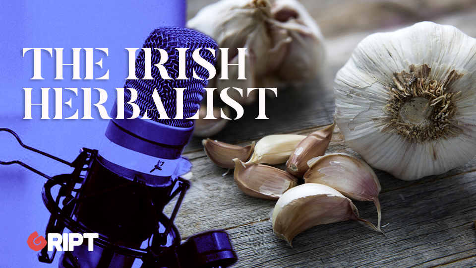The Irish Herbalist 12 – Garlic