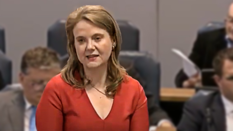 FG MEP: That Catherine Noone one lost us the election