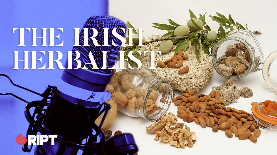 The Irish Herbalist 18 – The Lymphatic System