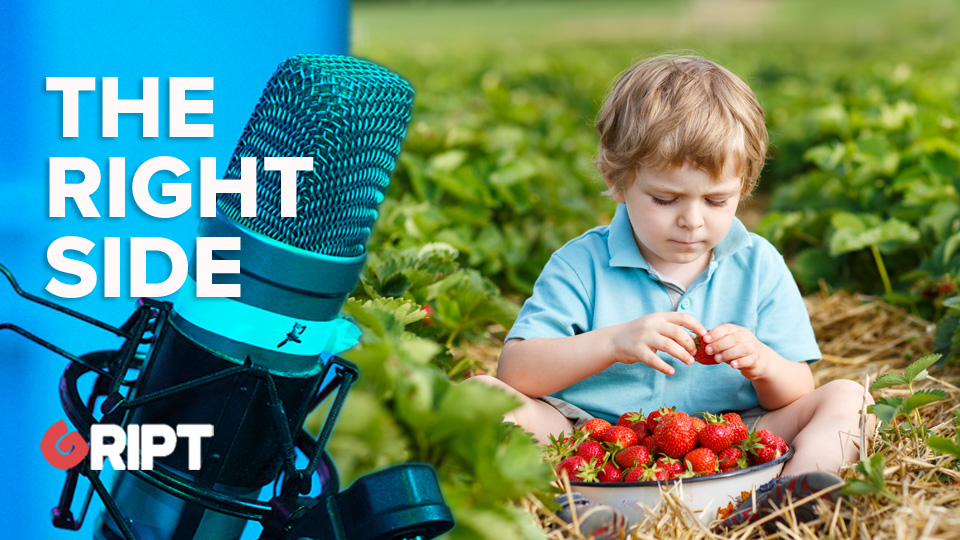 TRSI 211 – Get back to the strawberry fields