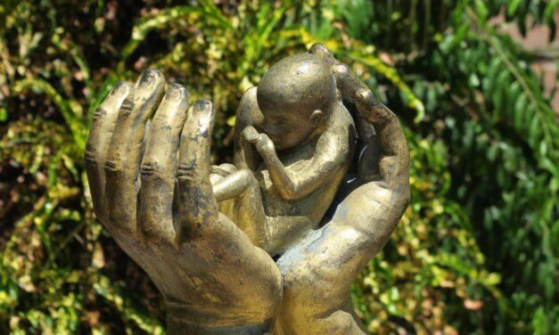 2000 Irish women needed post-abortion support last year